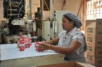 Empaquetage du Thé dans l'usine de Bois Chéri