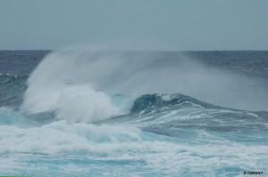 OCEAN INDIEN @A.CASSIM
