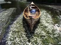 7ème rassemblement de canoës en bois sur l'Orne @D.Josse