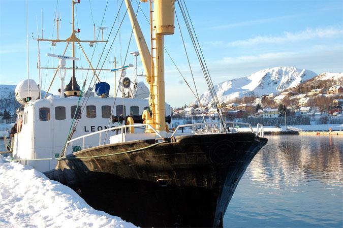 Bateau de pêche en Norvège