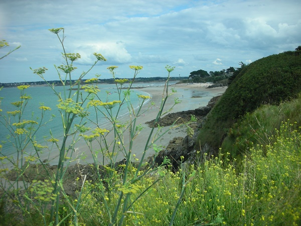 Littoral Bretagne Photo A.Cassim