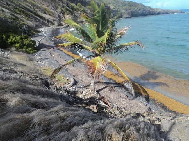 Océan  Atlantique + littoral Photo AC