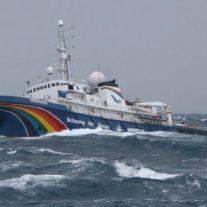 Le plus grand bateau de Greenpeace, l'Esperanza, fait escale dans le port de La Rochelle.