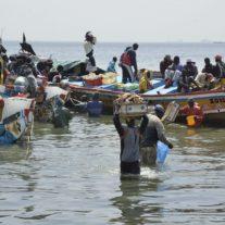 Pêche coopérative pour ressources partagées